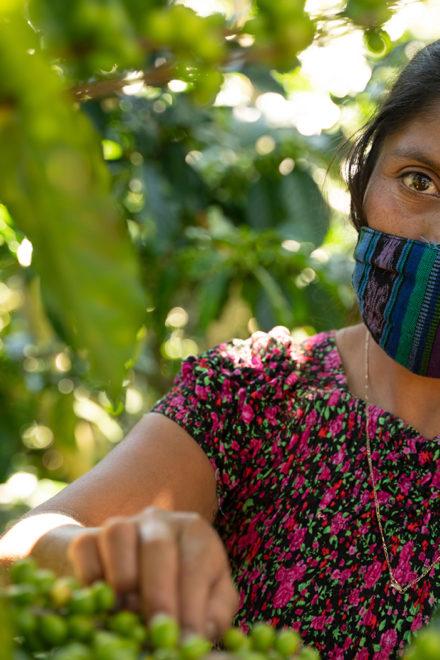 Progreso presenta la primera edición del Premio Regional de Periodismo en Sostenibilidad