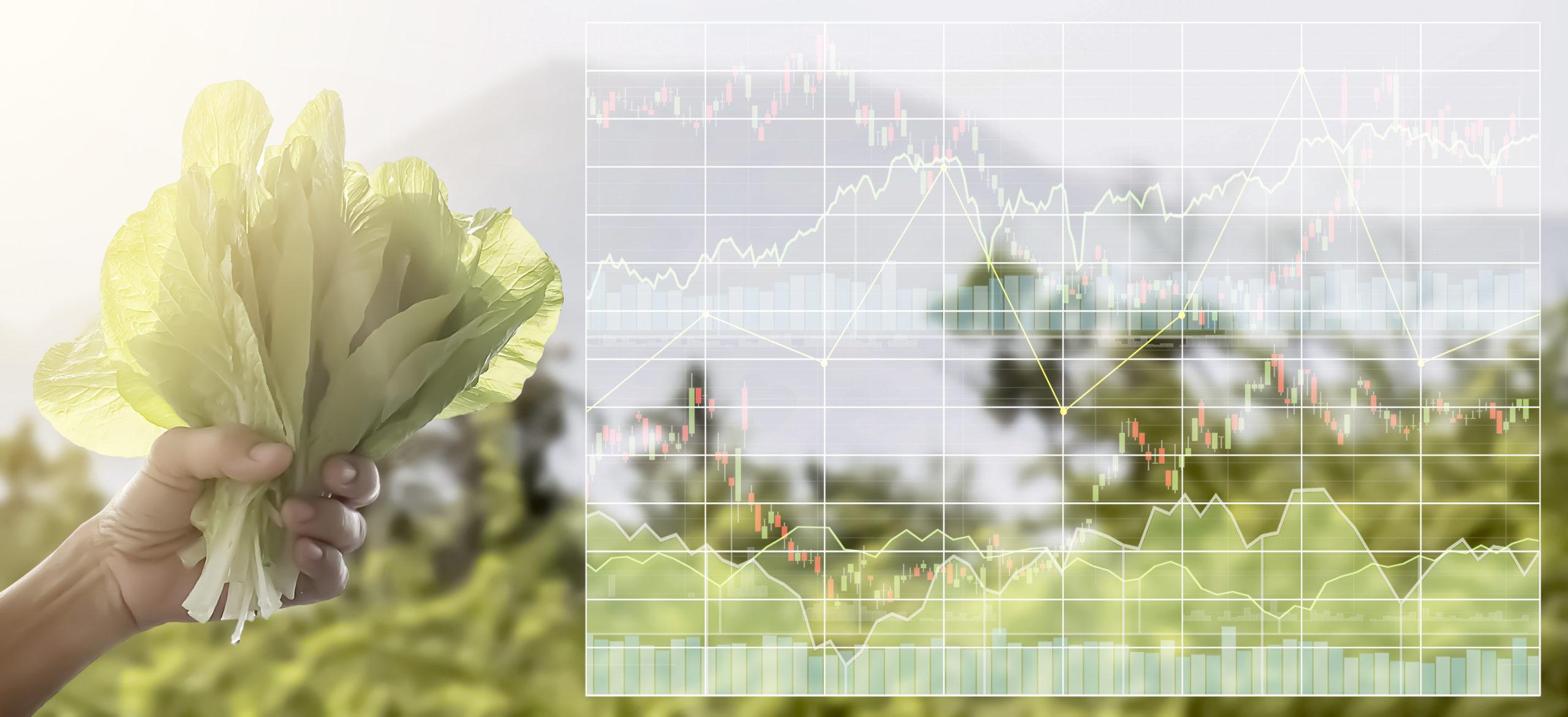 AgroEconomía-1-I&NJulio