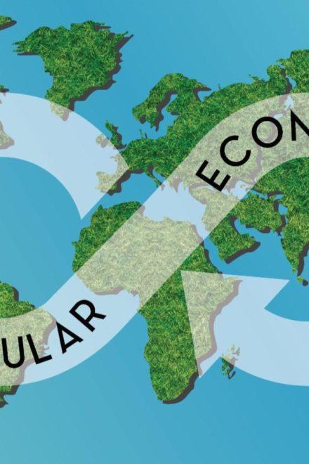 Economía circular y el ciclo de vida