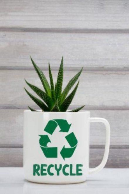 Aplicación del Reglamento para el Manejo de Desechos Sólidos